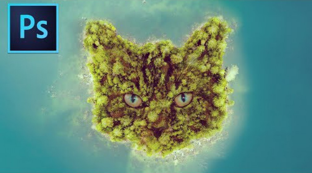 Photoshop Manipulation Tutorial Cat Face Island