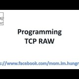 Programming: TCP RAW Technique