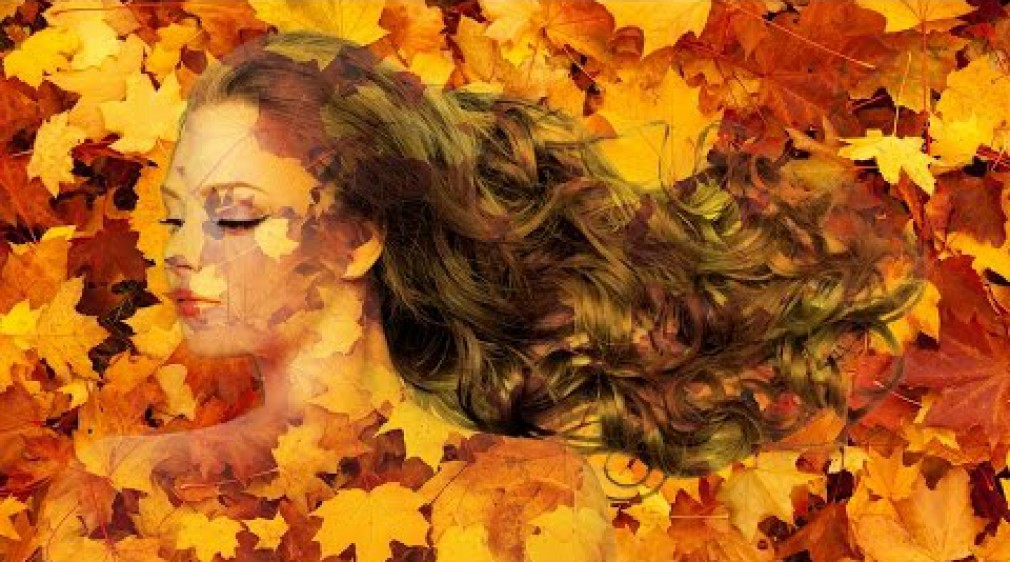 สอน Photoshop : Transform Picture into Autumn leaves