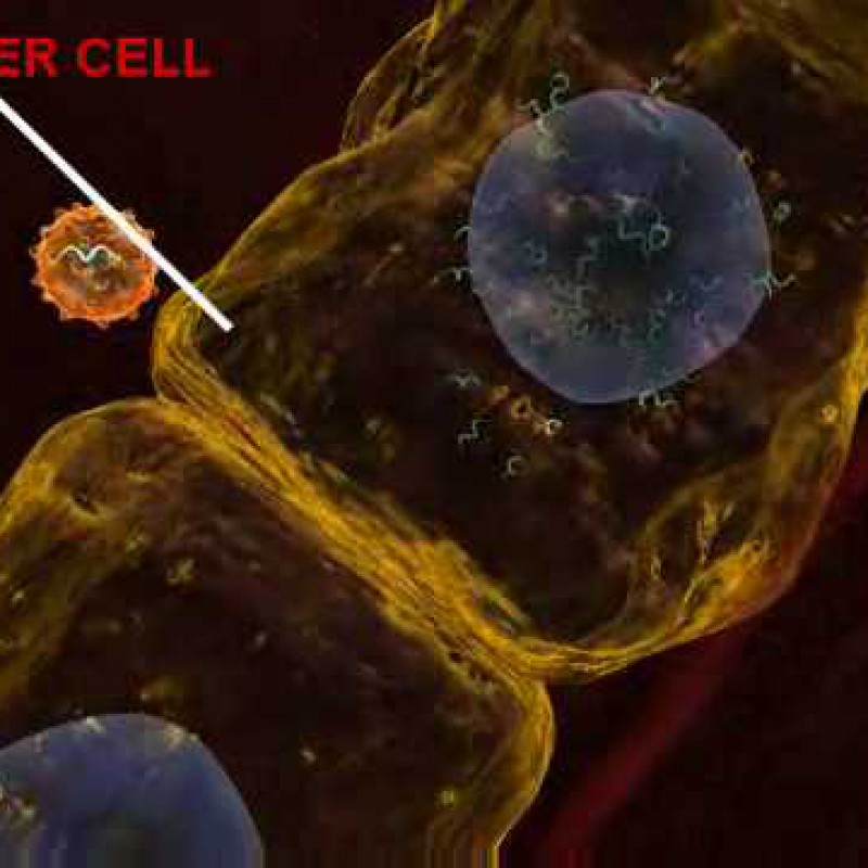Hepatitis C Infection - 3D Medical Animation