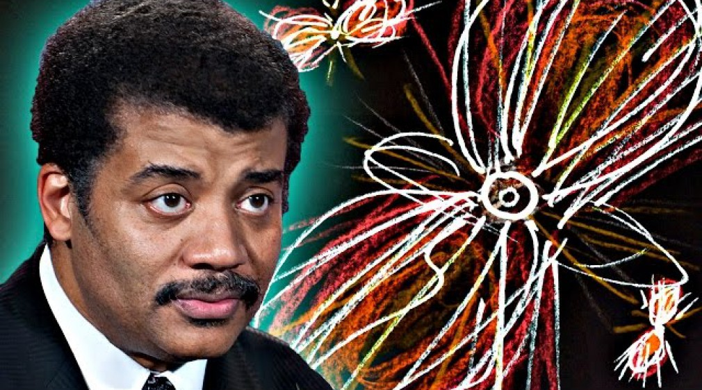 A Brief History of Everything, feat. Neil deGrasse Tyson