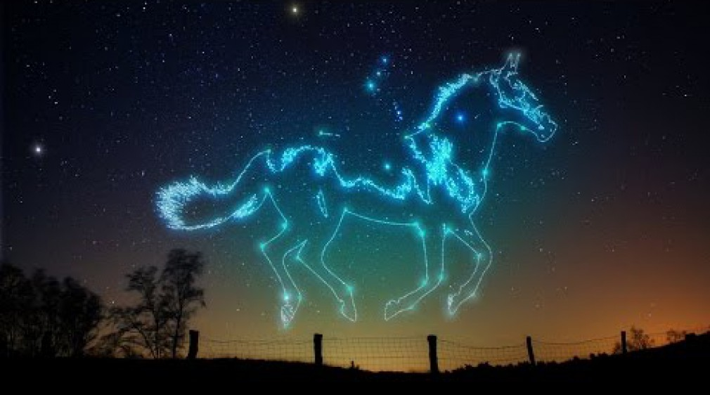 สอน Photoshop : How To Make Animal Constellation